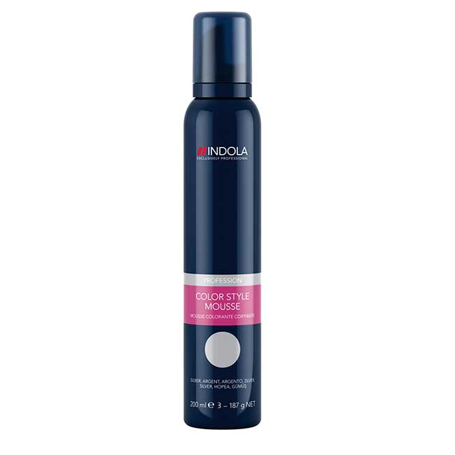Color Style Mousse Silber  200 ml